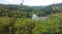 Lovely view of Swinstey Reservoir, thanks to Sue Lamb