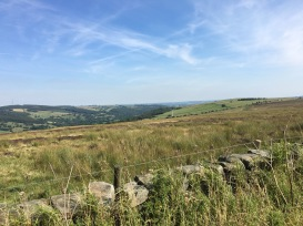A view from the Otley to Skipton Road