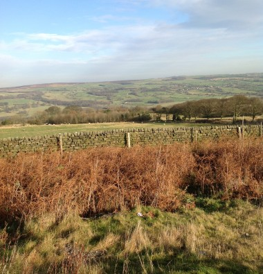 From Ilkley Moor the view across the Dales
