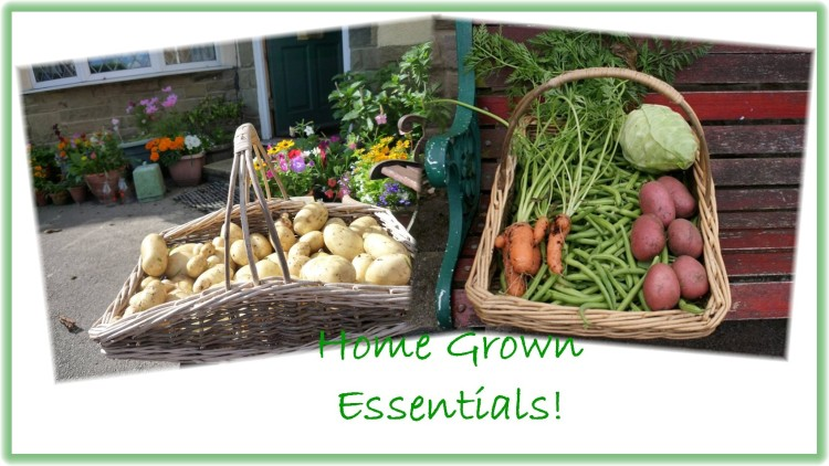 Home grown essentials 2