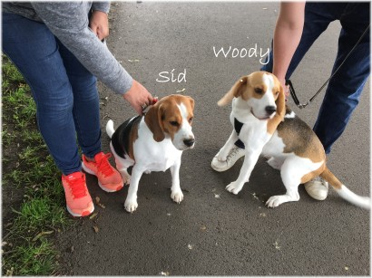Sid and Woody