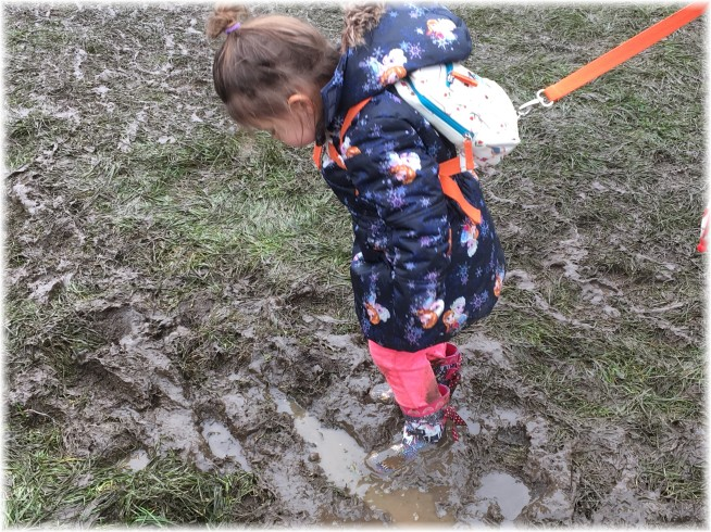 Evie in the mud
