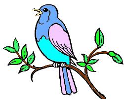 coloured in bird