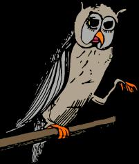 grey owl 2 down