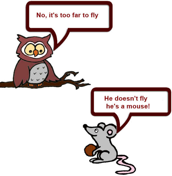 Owl and Mouse technical 9