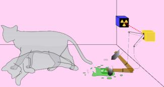 Schrodingers_cat.