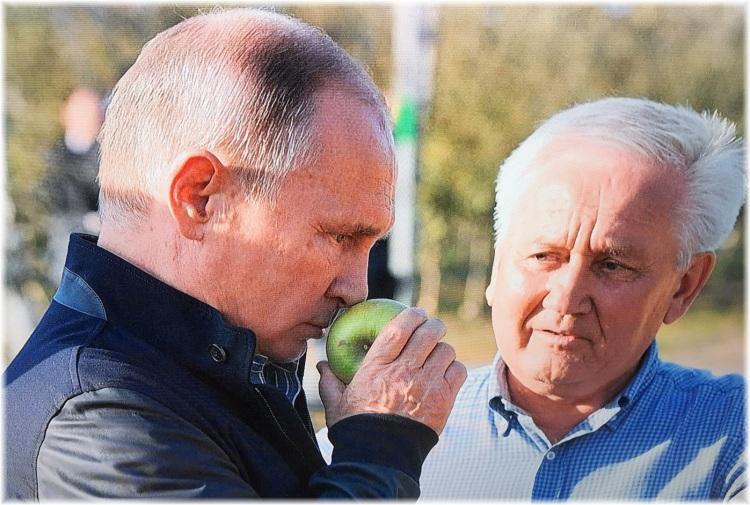 Putin apples 3