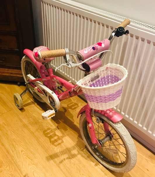 Evie's new bike