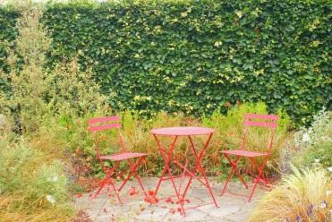 Hedgehog garden 2