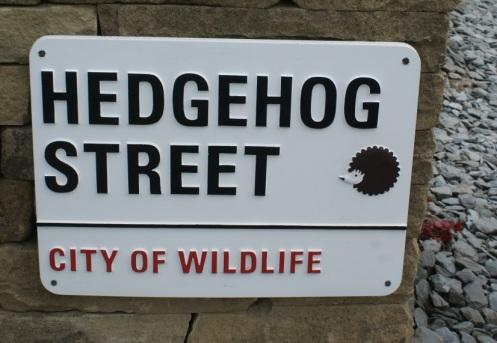 Hedgehog Street