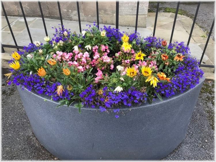Flower Tub outside Otley Dental Practice