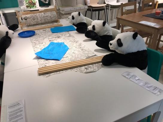 Panda dining