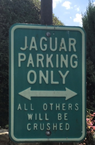 Jaguar parking