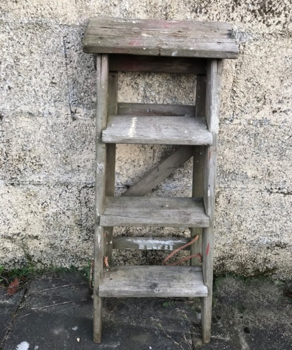 mum and dad's ladders