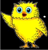 Little Owl 3
