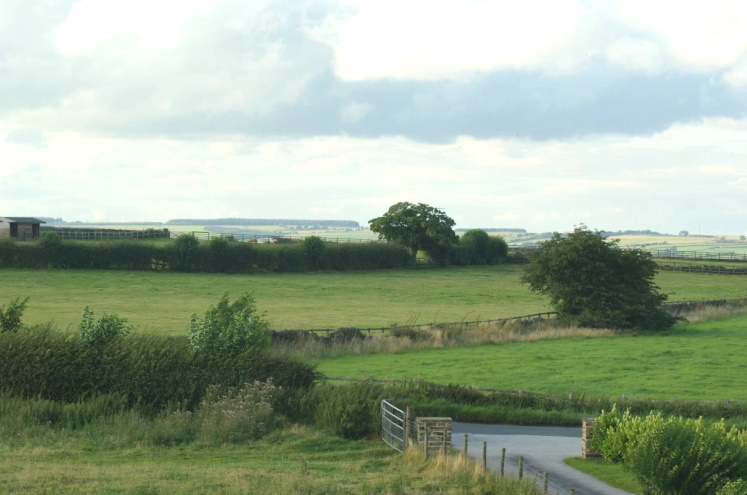 Looking Northwards from home
