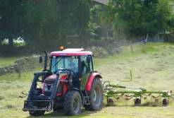 Turning the Grass
