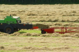 The hay is baled